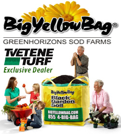 Big Yellow Bag for Soil